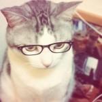 マスクでメガネが曇る!激安マスクでも曇らない方法は?