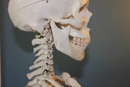 飲酒による顎の痛みの原因は急性アルコール筋症かも